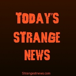 Today's Strange News